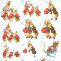 Studiolight - Disney - Peter Rabbit 7
