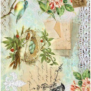 Cadence - Rijstpapier - Vogelnest