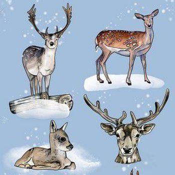 CraftEmotions - GB Dimensional stamp - Dieren uit het bos