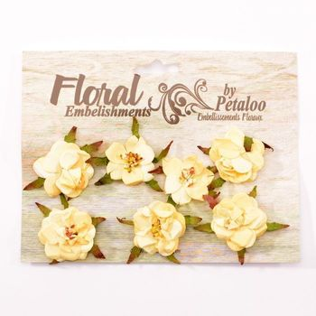 Petaloo - Rose blossoms cream