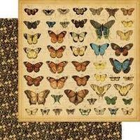 GR45 Old Curiosity Shop - Butterfly specifics