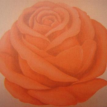 behangpapier roos