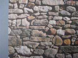 Rayher FSN muur