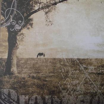 Rayher IN landschap