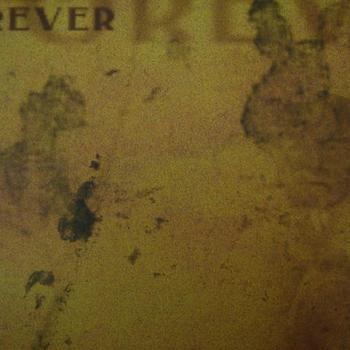Rayher VT forever