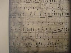 Rayher VT muzieknoten