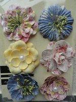 PM Flowers - Vinetta meadow lark
