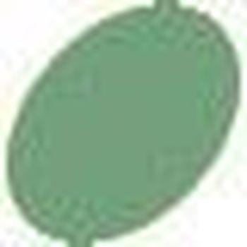 Perfect pearl mist - Green patina