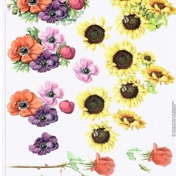 AC bloemen