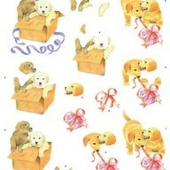 MM honden puppy's