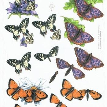 PI vlinders