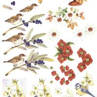 MD Mattie - vogels/bloemen