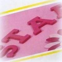 Cijfers & letters mini